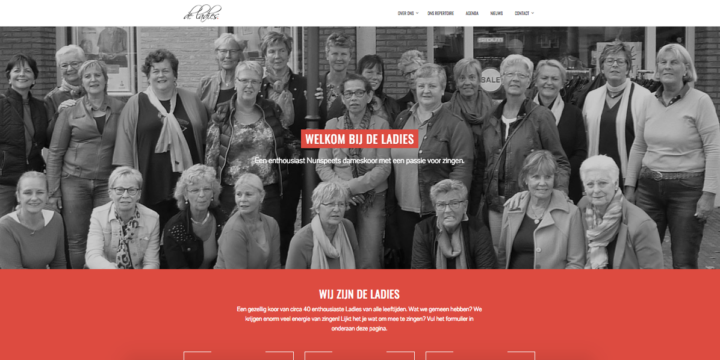 Nieuwe website voor De Ladies